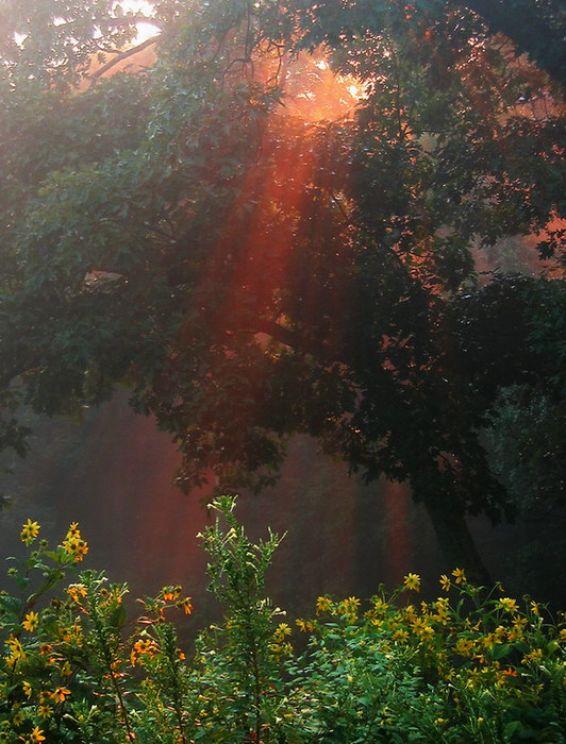 Горски пейзажи: Игра на светлината