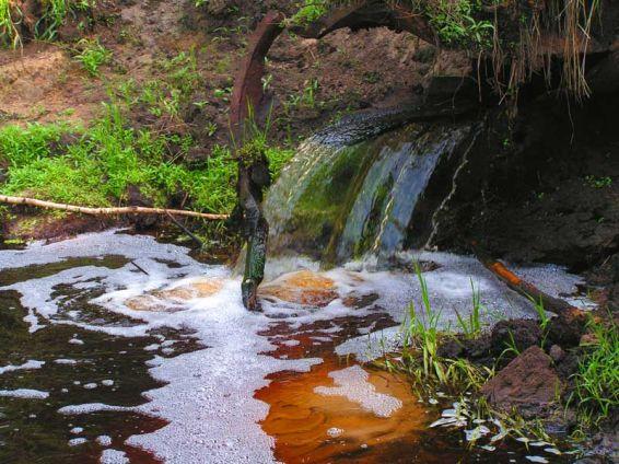 Водопади: В гората