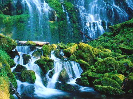 Водопади: Proxy Falls