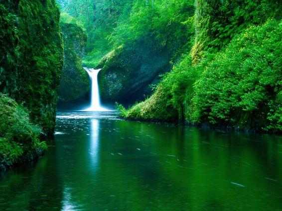 Водопади: Punch Bowl Falls