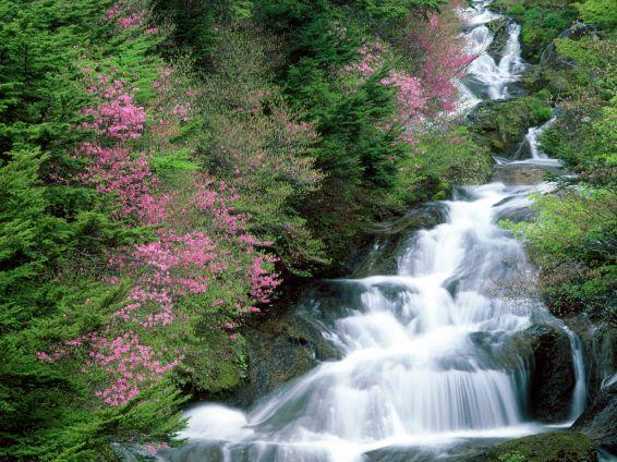 Водопади: Tochigi Prefecture